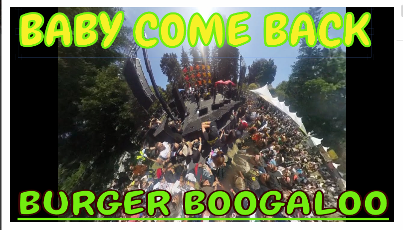 "Crowd shot as Derv Gordon of The Equals sing ""Baby Come back at Burger Boogaloo"